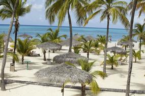 Hotel Manchebo Beach Resort 2