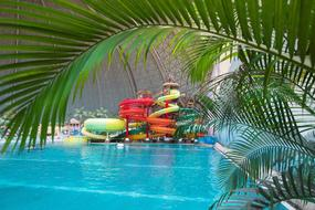 Vakantiepark Tropical Islands 4