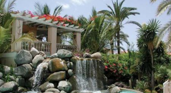 Hotel Palm Oasis 3